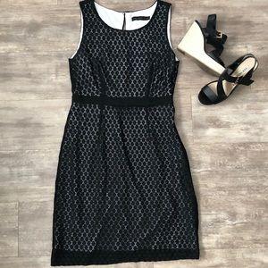 Limited | dress | EUC